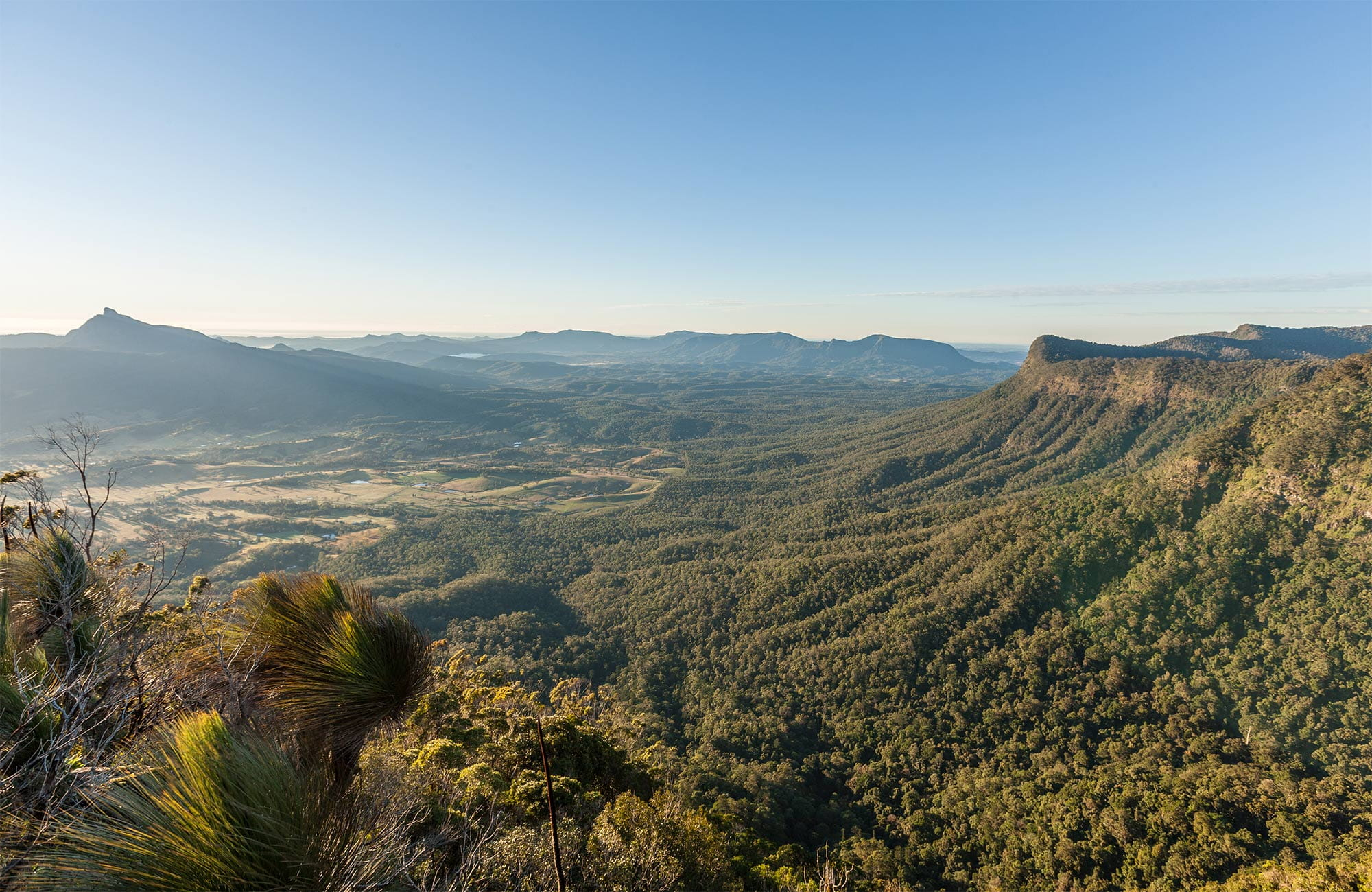 View of Mount Warning, Border Ranges National Park. Photo: John Spencer