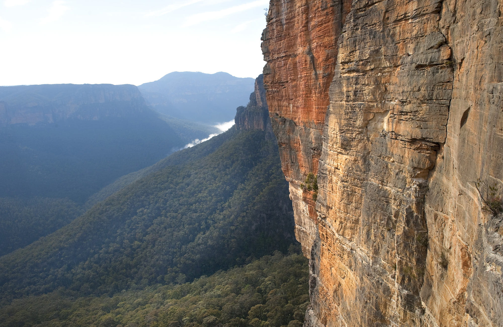 Blue Mountains National Park. Photo: David Finnegan
