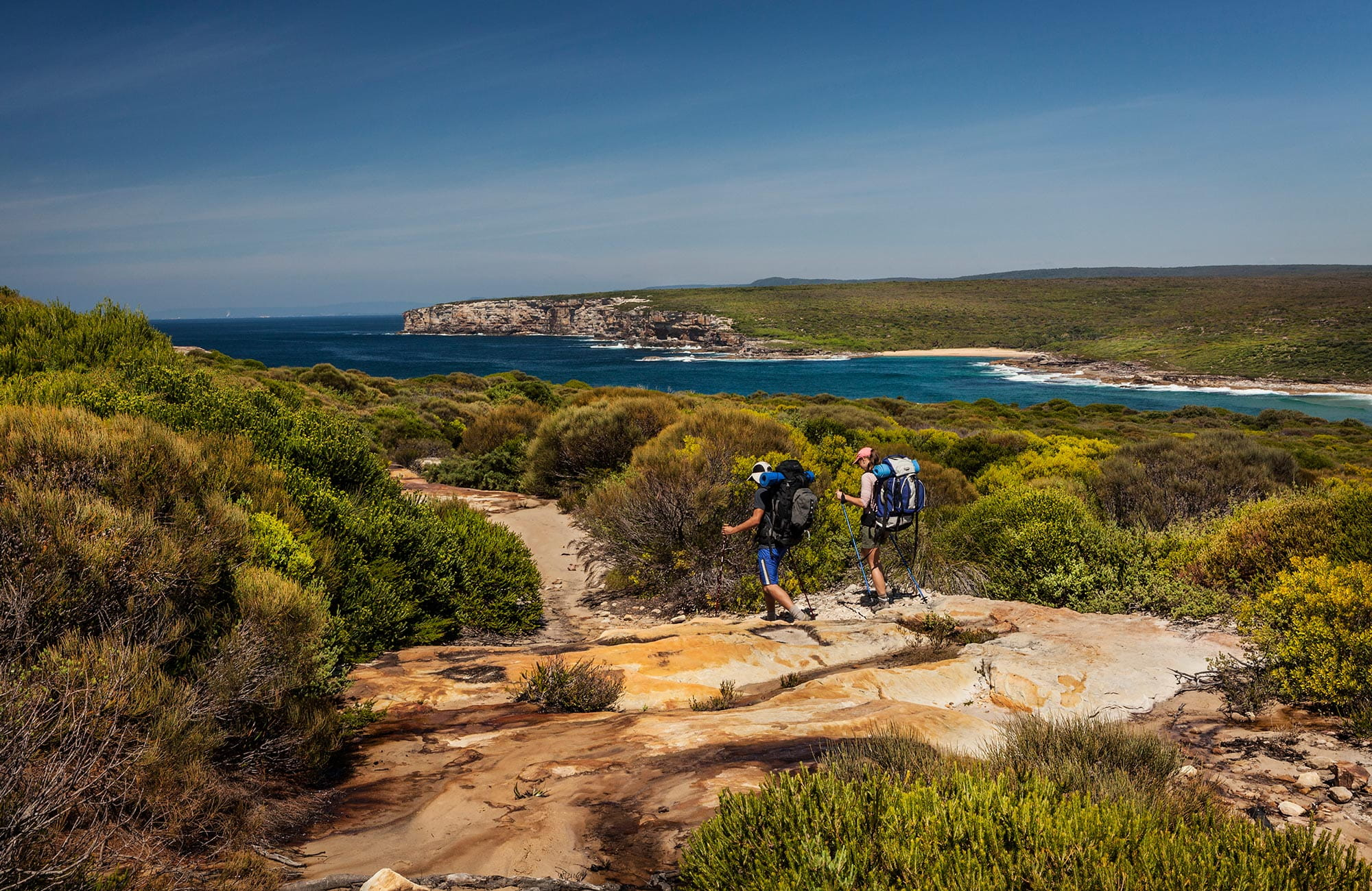 Curra Moors loop track, Royal National Park. Photo: David Finnegan