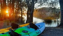 View of 2 brightly-coloured kayaks at the shoreline of Myall Lake, with the sun setting behind trees. Photo credit: Tony Schofield © Adventure Activities Outdoors