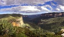 Sweeping vista of steep cliff bands and forest-clad valleys in Blue Mountains National Park. Photo credit: Julien Nicolle © All About Australian Tours