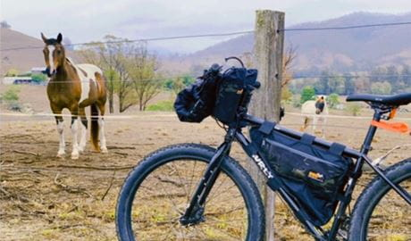 Mountain bike resting on a fence post with a horse and hilly farmland in the background. Photo © Alex Cudlin