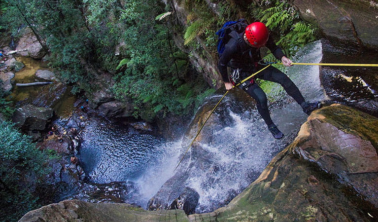 A person abseiling down a canyon in Blue Mountains National Park. Photo: © Australian School of Mountaineering.