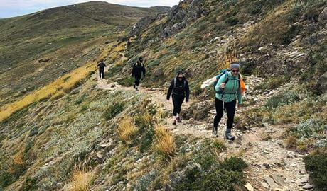 A group of 4 hikers with packs walk a rugged alpine mountain track in Kosciuszko National Park. Photo credit: Matt Jolley © Bang Fitness Adventures
