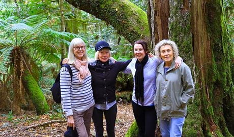 A group of 4 women stand among rainforest trees and ferns in Barrington Tops National Park. Photo © Barrington Outdoor Adventure Centre