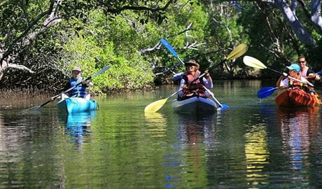 A family paddling in 3 kayaks along the Brunswick River. Photo © Byron Bay Eco Cruises & Kayaks
