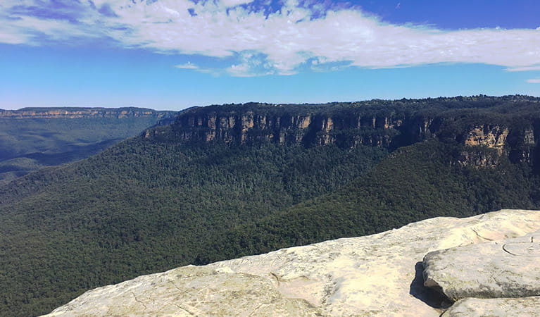 Sweeping view past a rock ledge to forest-clad valleys and steep cliff bands in the Blue Mountains. Photo credit: Jelle Marechal © Dingo Tours
