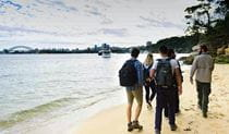A group treks along a sandy beach with their EcoWalks Tours guide, with the Sydney Harbour Bridge in the distance. Photo © EcoWalks Tours