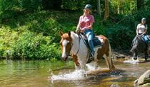 A pair of women on horseback make a river crossing.  Photo credit: Andrew Cooney © Glenworth Valley Outdoor Adventures