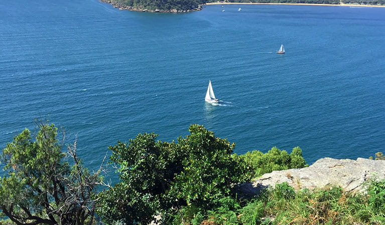View of 2 sailing boats on the blue waters of Pittwater estuary, Ku-ring-gai Chase National Park. Photo credit: M Bryant © Go Beyond Tours