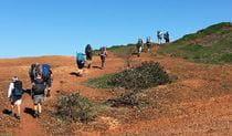 Hikers walk across open heathland in Yuraygir National Park.  Photo credit: Marcus Ludriks © Home Comforts Hiking