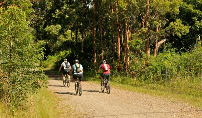 Mountain bikers in Glenrock State Conservation Area. Photo: © Shaun Sursok