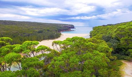 View of Wattamolla with coastal bushland and sandy beach in the Royal National Park, near Sydney. Photo © M8 Explorer