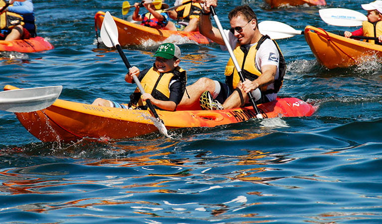 View of man and boy paddling an orange double kayak, with more kayakers in the background. Photo © Manly Kayak Centre