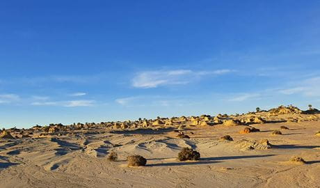 Landscape of small sculpted hills, or lunettes, on the shores of a dry lake in Mungo National Park. Photo credit: Gregory Woods © Mungo Guided Tours