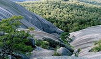 Rock formations in Bald Rock National Park. Photo credit: John Thompson © Nature Bound Australia