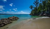 Pristine sandy beach with small rocky reef and tree-covered coastline against an clear sky. Photo credit: Phill Small © Phill Small Photography