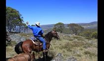 Horse riding safari in Kosciuszko National Park. Photo © Roslyn Rudd