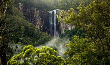View of sheer cliffs and waterfall in a misty rainforest setting. Photo © Rise Up – Byron Conscious Tours