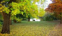 The gardens of Monaro in autumn. Photo © Ross Garden Tours