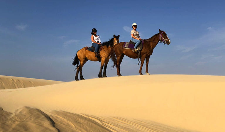 2 riders on horses stand on a high dune, against a backdrop of dunes and blue sky. Photo credit: Emily Sansom © Sahara Trails Horse Riding