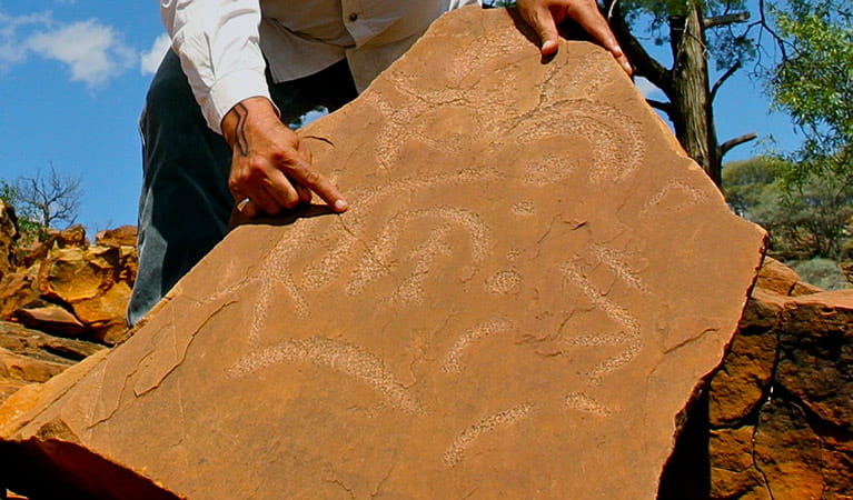A guide points out etchings on a slab of sand-coloured rock. Photo credit: Janine Gowenlock © Tri State Safaris