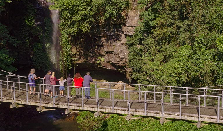 Tour guests enjoy views of a waterfall from a suspension bridge, set amongst lush greenery and rock cliffs. Photo credit: Nathan Litjens © Waves to Wilderness Experiences