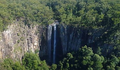 Minyon Falls, surrounded by World Heritage-listed rainforest in Nightcap National Park. Photo: Glenn Sanders © Wild Byron