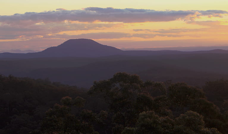 Mount Yengo at sunset in Yengo National Park. Photo credit: Leanne King © Wollombi Aboriginal Cultural Experiences and Consultancy