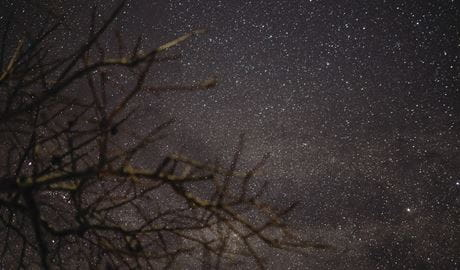 Starry night-time sky. Photo: James Elks
