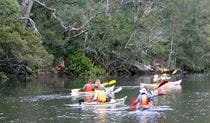 People kayaking in double kayaks on the Hawkesbury River. Photo: Tim Porter/OEH