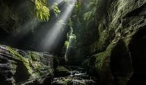 Claustral Canyon, Blue Mountains National Park. Photo: Michael Breer.