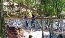 Two people looking out from a footbridge in Copeland Tops State Conservation Area. Photo credit: S. Milgate. © DPIE