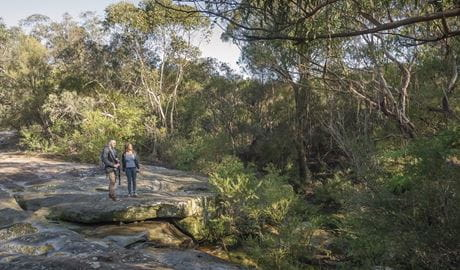 Two people enjoying the bush views on Cascades trail in Garigal National Park. Photo: John Spencer/OEH