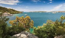 View over Sydney Harbour from Manly scenic walkway in Sydney Harbour National Park. Photo D Finnegan/OEH