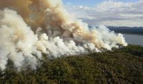 Aerial view of smoke plumes from a coastal hazard reduction burn. Photo: John  Lugg/OEH
