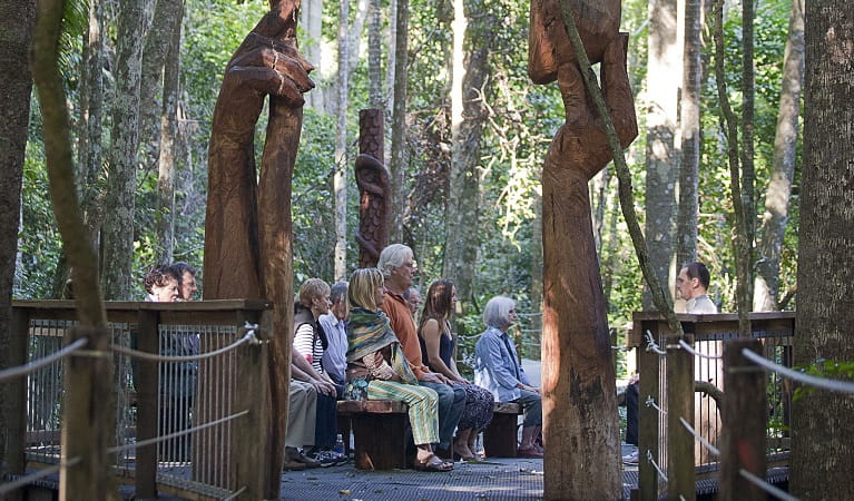 Yoga in  the rainforest, Sea Acres National Park. Photo: H Ellis