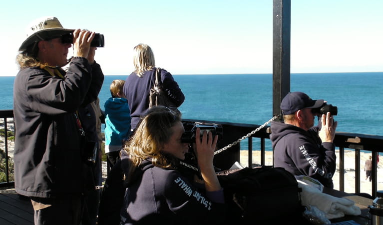 People undercover using binoculars to spot whales, Kamay Botany Bay National Park. Photo: Susan Aston Metham/OEH