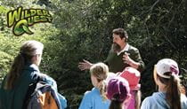 Aboriginal Discovery tour. Photo: Bob Peters/OEH