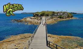 The bridge to Bare Island and Bare Island fort, Kamay Botany Bay National Park. Photo: Elinor Sheargold/OEH