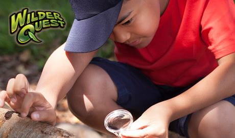 Boy with magnifying glass on WilderQuest activity. Photo: Rosie Nicolai