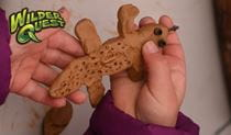 A child holding a clay lizard they made on a wilderQuest activity. Photo: Paul Watkins