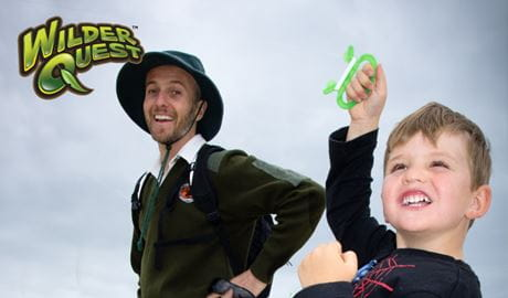 WilderQuest forest flyers. Photo: David Duffy/NPWS