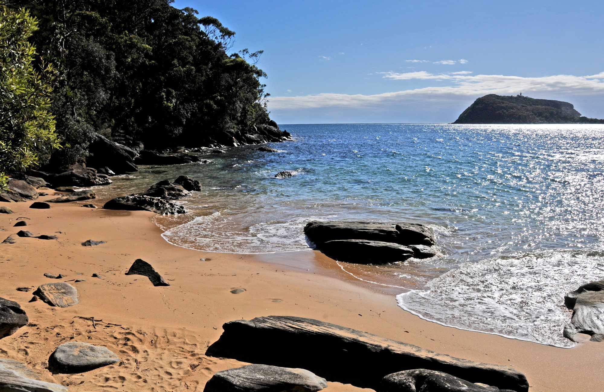 Beach in Ku-ring-gai National Park. Photo: Christina Bullivant