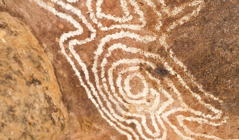 Mulgowan Aboriginal Art Site Track, Gundabooka National Park. Photo: David Finnegan/OEH
