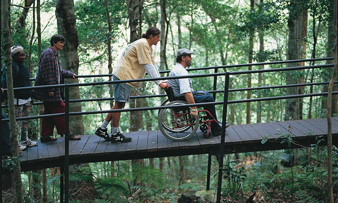 Wheelchair access for visitors along Minnamurra Rainforest boardwalk, Budderoo National Park. Photo: Joel Winter/OEH
