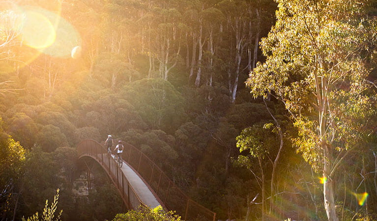 Two mountain bike riders cross a bridge along Thredbo Valley track in Kosciuszko National Park. Photo: Boen Ferguson/DPIE
