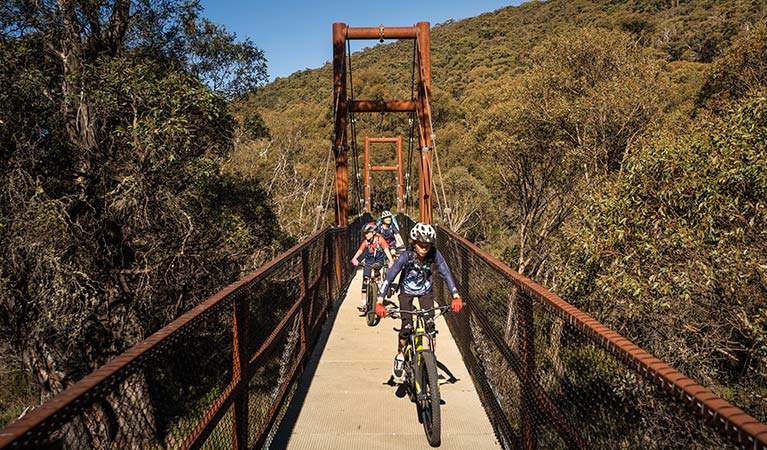 A family rides across suspension Bridge 1 along Thredbo Valley track in Kosciuszko National Park. Photo: Robert Mulally/DPIE