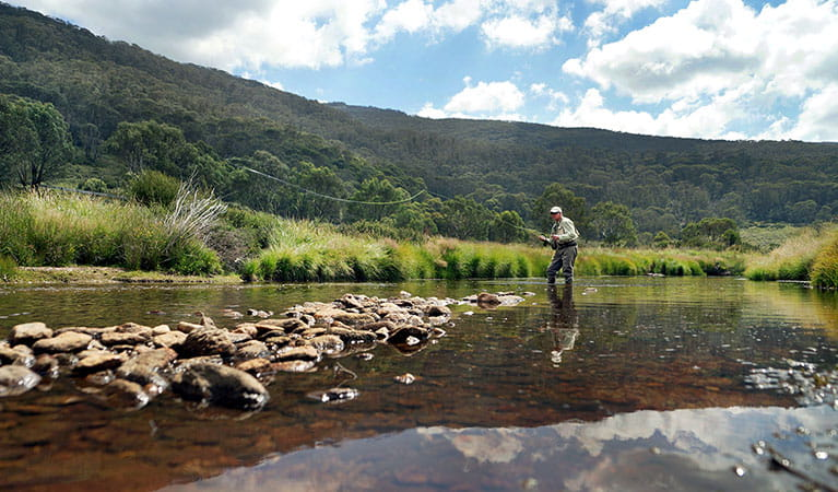 A man casts a fly-fishing line in a river near Thredbo, Kosciuszko National Park. Photo: Thredbo Resort