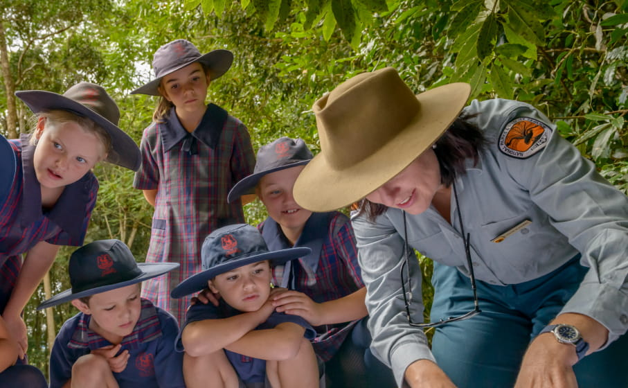 Students on a school excursion in Dorrigo National Park. Photo: John Spencer/OEH